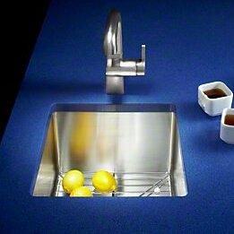 Strive 15 L x 15 W Under-Mount Bar Sink with Basin Rack by Kohler