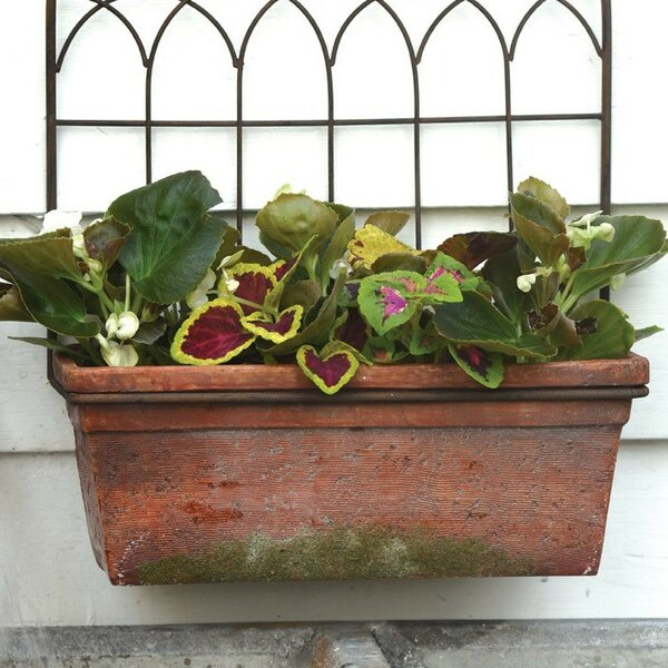 Terracotta Wall Planter with Trellis by Boston International