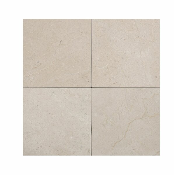 Crema Marfil 4 x 4 Marble Field Tile in Beige by Parvatile