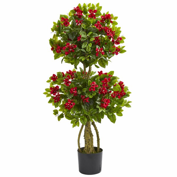 Double Bougainvillea Ficus Topiary by Red Barrel Studio