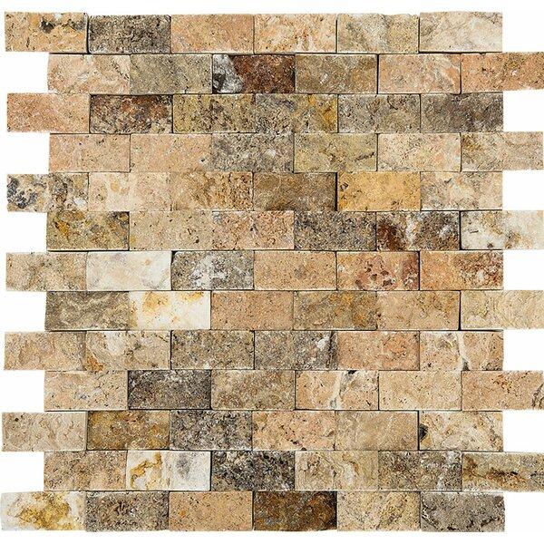 Scabos Split Face 1 x 2 Stone Mosaic Tile by Parvatile