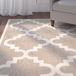 Short Ashton Brown/Beige Indoor/Outdoor Area Rug By Winston Porter