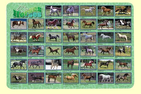 Horses Placemat (Set of 4) by Painless Learning Placemats