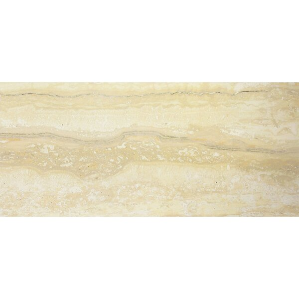 Nova 12 x 24 Porcelain Field Tile in Gold by Madrid Ceramics