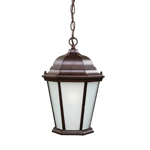 Comparison Bellver 1-Light Outdoor Hanging Lantern By Astoria Grand