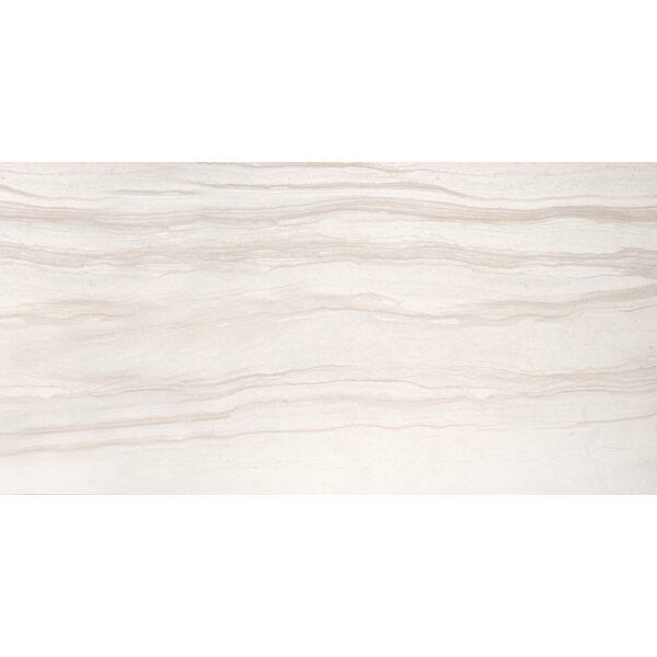 Motion 12 x 24 Porcelain Field Tile in Advance by Emser Tile