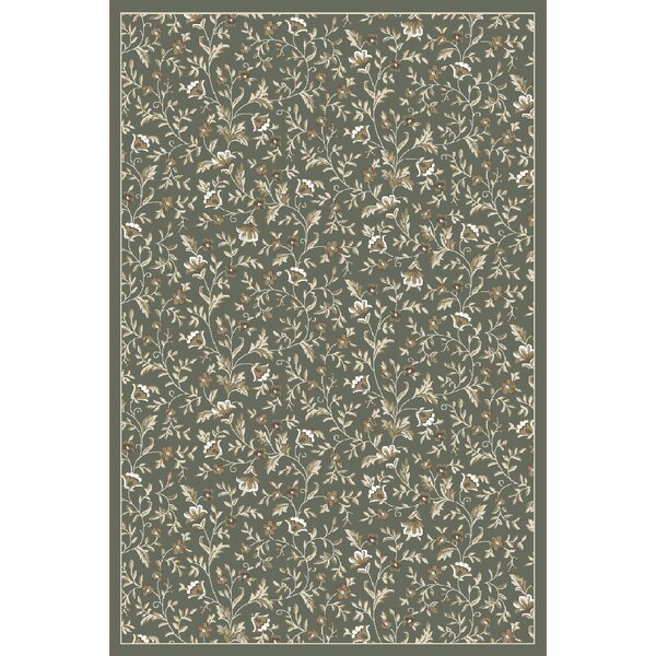 Ackermanville Light Green/Ivory Area Rug by Charlton Home