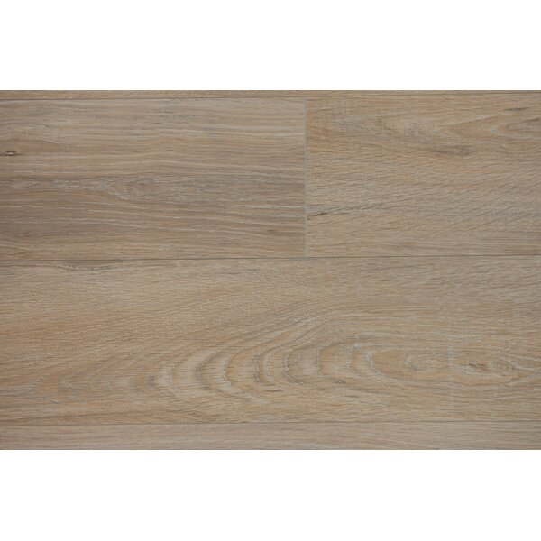 Zurich 6.12 x 47.25 x 12mm Oak Laminate Flooring in Oat by Branton Flooring Collection