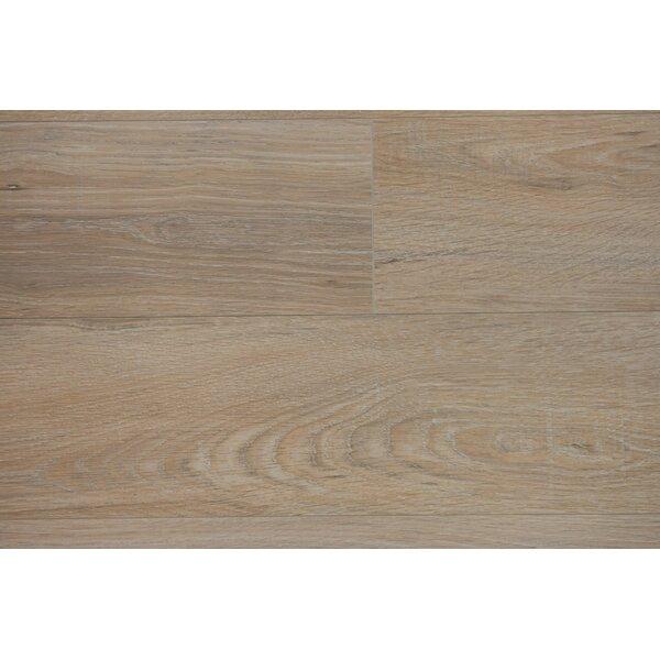 Zurich 6.12 x 47.25 x 12mm Oak Laminate Flooring in Oat by Branton Flooring Collection