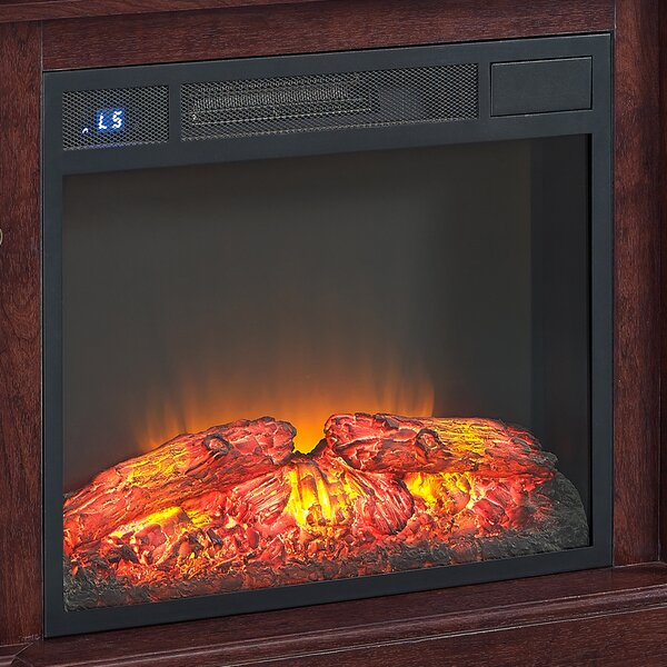 Electric Fireplace Insert by Hazelwood Home