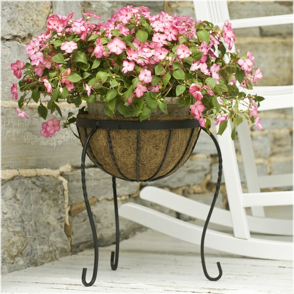 Canterbury Plant Stand by CobraCo