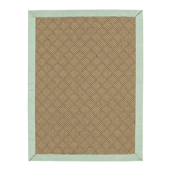 Major Sunbrella Canvas Spa Indoor/Outdoor Area Rug by Highland Dunes