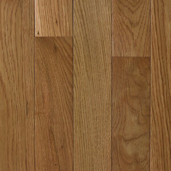 Cyprus 3 Solid Oak Hardwood Flooring in Barley by Branton Flooring Collection
