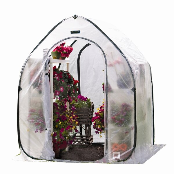 5 Ft. W x 6.5 Ft. D Mini Greenhouse by Flowerhouse
