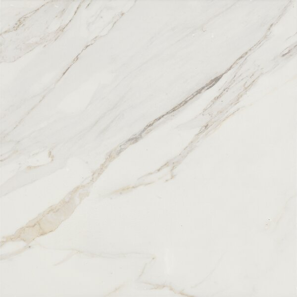 Baldocer 24 x 24 Porcelain Field Tile in Glossy White by Bella Via