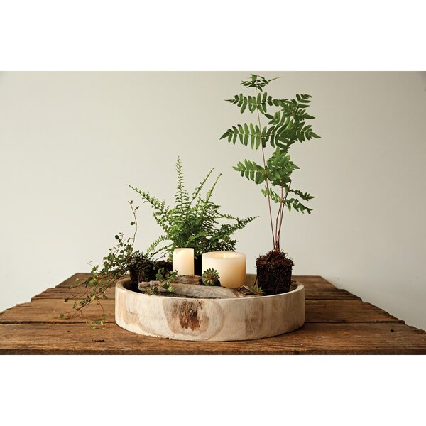 Louque Accent Tray by Union Rustic