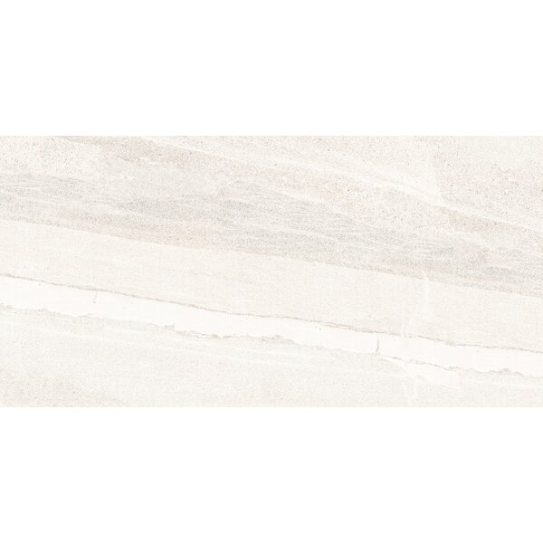 Access 12 x 24 Porcelain Field Tile in Path by Emser Tile