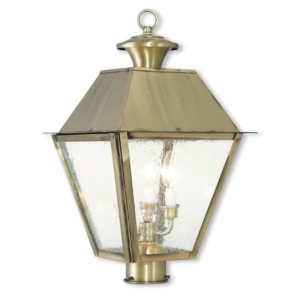 Cynda Outdoor 3-Light Lantern Head by Darby Home Co