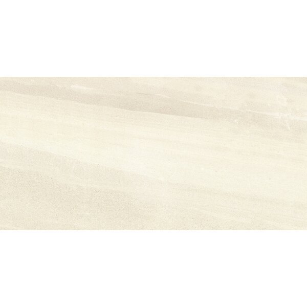 Access 12 x 24 Porcelain Field Tile in Route by Emser Tile