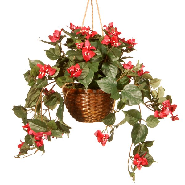Round Basket Planter by National Tree Co.