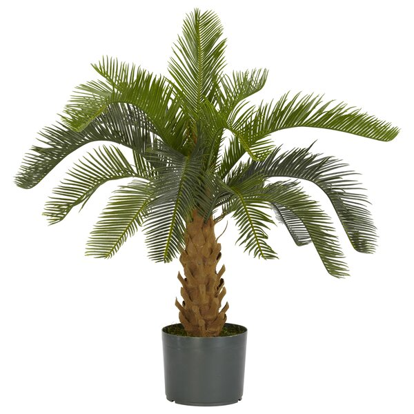 Cycas Silk Floor Plant in Pot by Nearly Natural