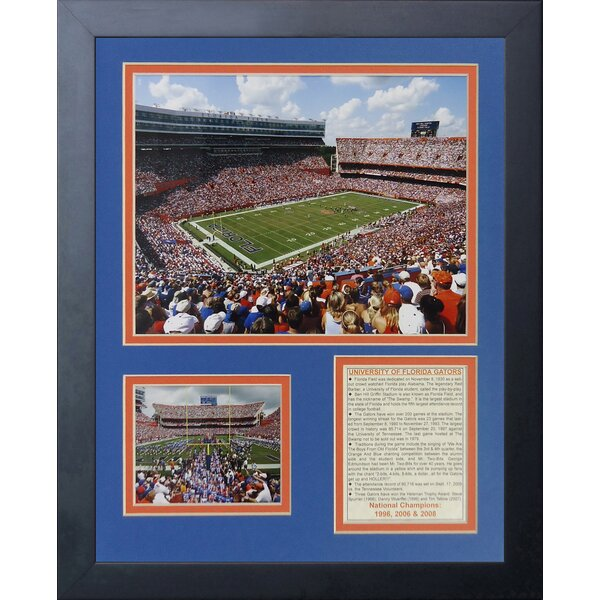 Florida Gators Ben Hill Griffin Stadium Framed Memorabilia by Legends Never Die