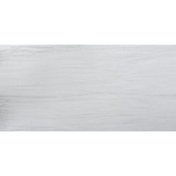 Latitude 12 x 24 Porcelain Field Tile in Gray by Emser Tile