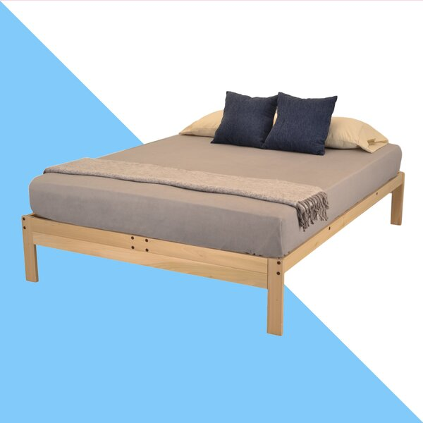 Warner Platform Bed and Twin Trundle by Hashtag Home