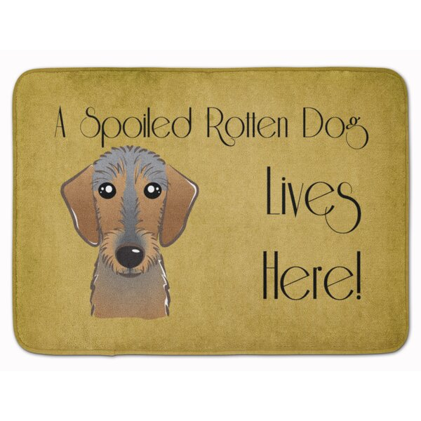 Wirehaired Dachshund Spoiled Dog Rectangle Microfiber Non-Slip Bath Rug