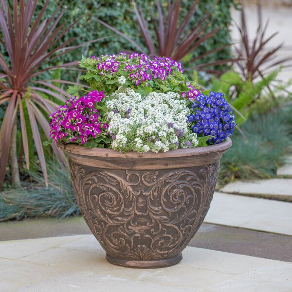Mélanie Magnesium Oxide Pot Planter by One Allium Way