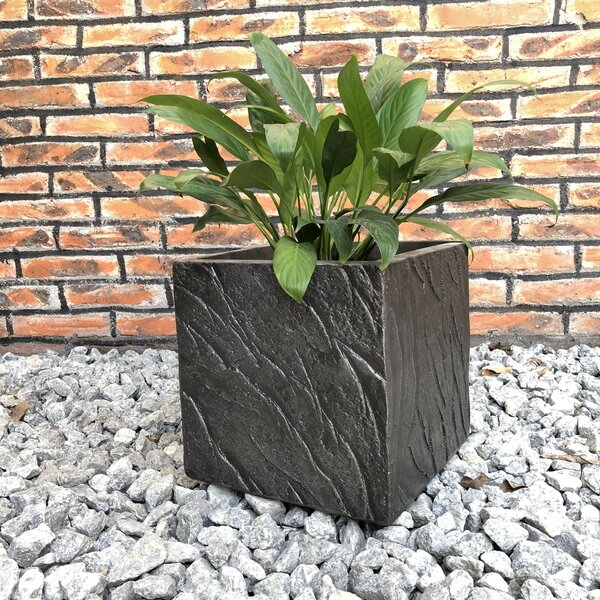 Funk Slate Planter Box by Williston Forge