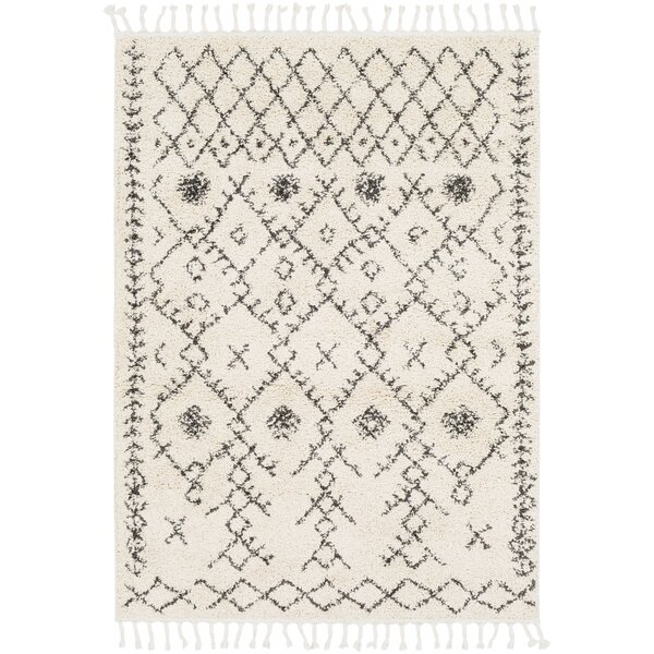 Roger Modern Bohemian Ivory/Charcoal Area Rug by Langley Street