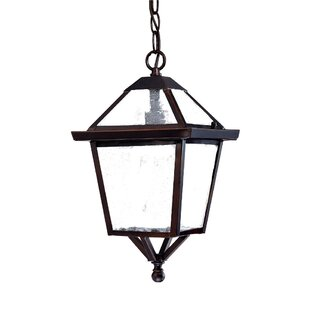 Great Price Britannia 1-Light Outdoor Hanging Lantern By Darby Home Co