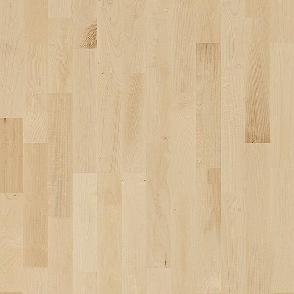 European Naturals 3-Strip 7-7/8 Engineered Maple Salzburg Hardwood Flooring by Kahrs