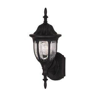Rayfield 1-Light Outdoor Sconce By Charlton Home Outdoor Lighting