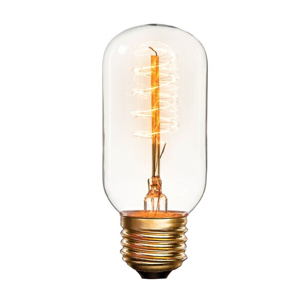 25W E26 Incandescent Light Bulb by Darice