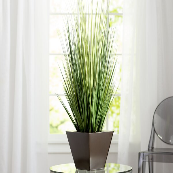 Artificial Grass in Square Tempered Decorative Vase by Mercury Row