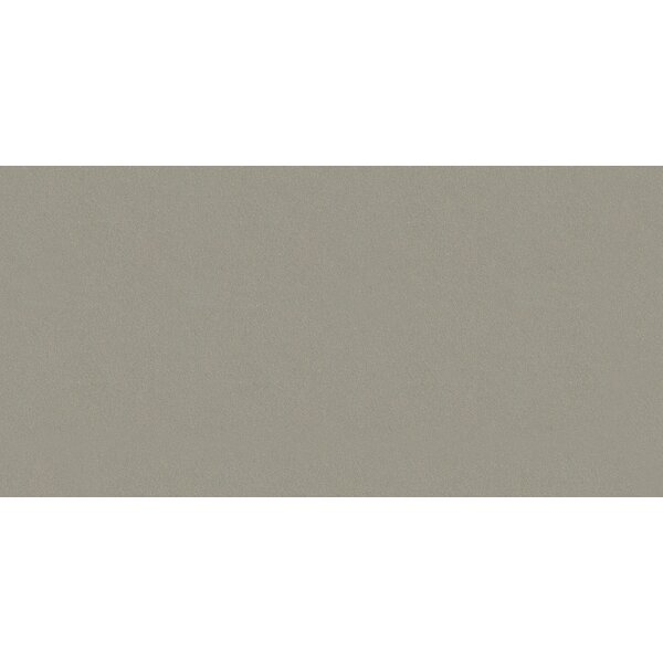 Element 12 x 24 Porcelain Field Tile in Matte Wind Gray by Walkon Tile