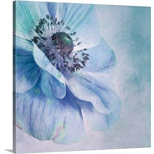 'Shades of Blue' by Priska Wettstein Photographic Print on Canvas by Great Big Canvas