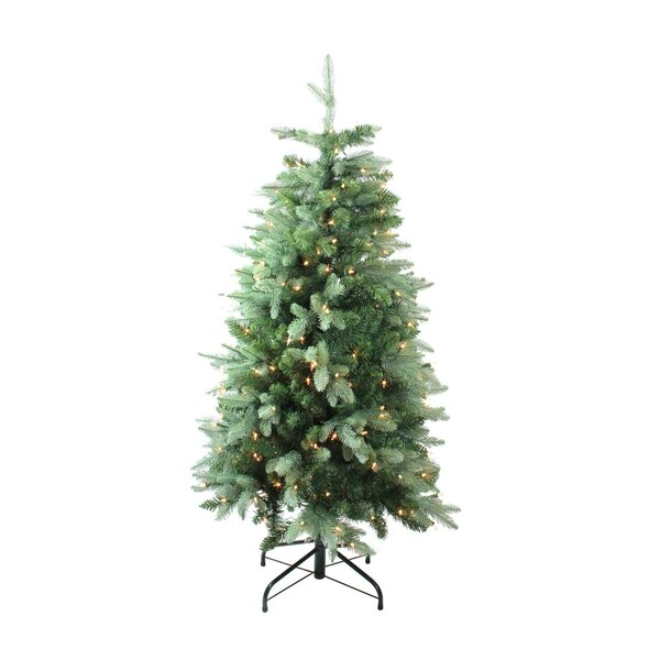 Frasier Fir 55 Green Fresh Cut Christmas Tree with 250 Clear/White Lights by The Holiday Aisle