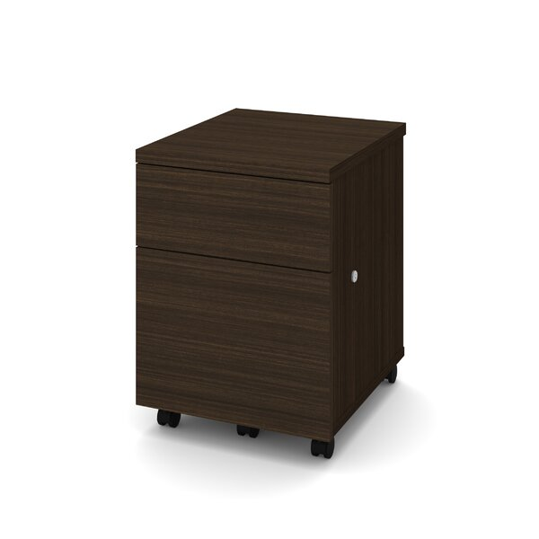Schaper 1-Drawer Mobile Vertical Filing Cabinet by Wrought Studio