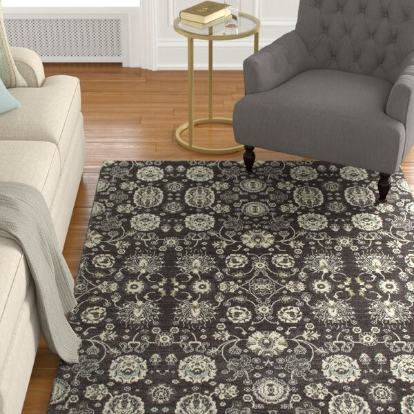 Castellano Gray/Cream Area Rug by Charlton Home