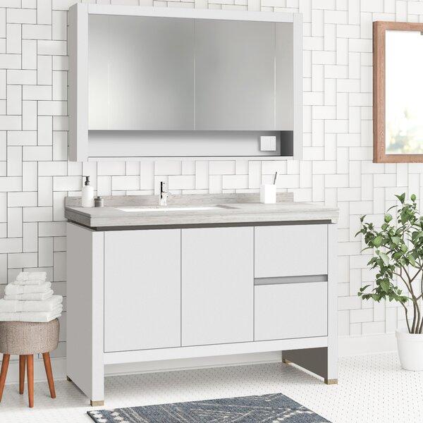 Ferris 40 Single Bathroom Vanity Set with Mirror