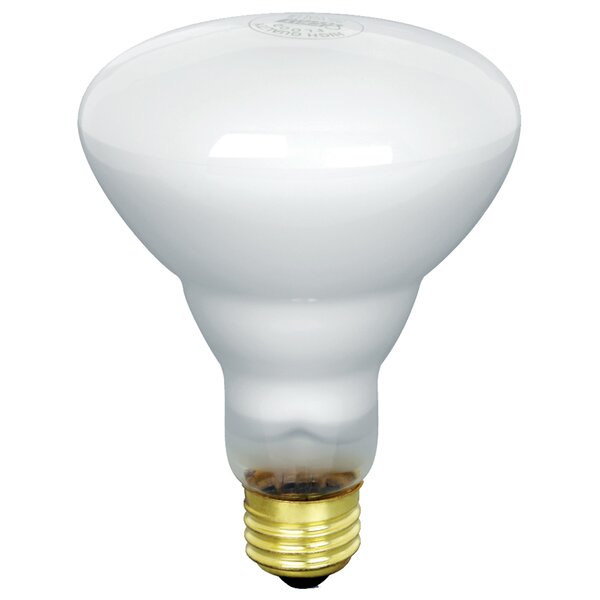 65W 130-Volt Incandescent Light Bulb (Pack of 12) by FeitElectric