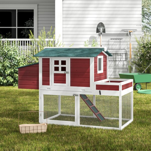 Basil Chicken Coop with Run Area and Nesting Box by Archie & Oscar