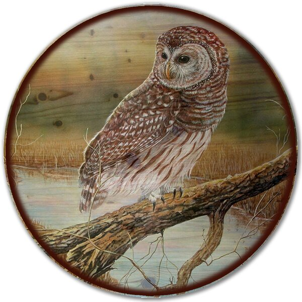Early Hunter Owl Lazy Susan by WGI-GALLERY
