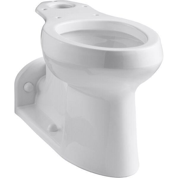 Barrington™ Comfort Height® Rear Outlet Toilet Bowl with Bedpan Lugs and Antimicrobial Finish, Less Seat by Kohler