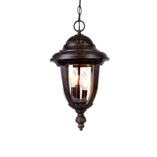 Buy luxury Prestwood 3-Light Outdoor Hanging Lantern By Charlton Home