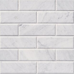 Arabeo Hon And Bev 4 X 12 Marble Subway Tile In White