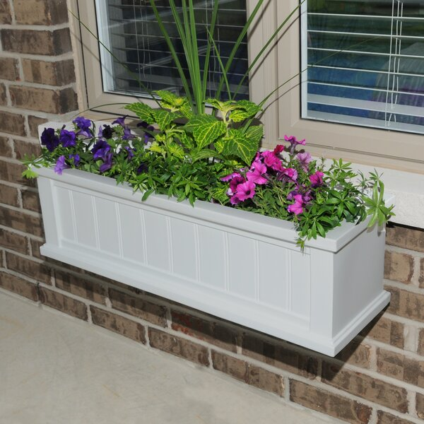 Cape Cod Self-Watering Plastic Window Box Planter by Mayne Inc.